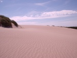 Sand dunes in the Coorong