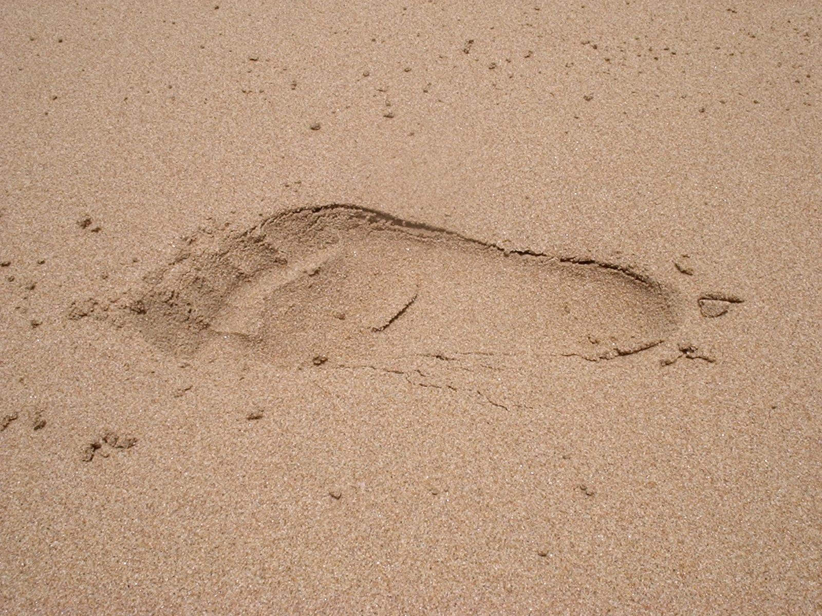 Jeff's foot, Balding Bay, Magnetic Island